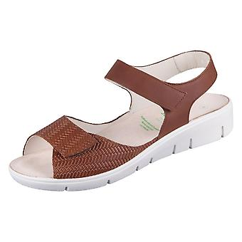 Solidus Honey 7601030296 universal  women shoes