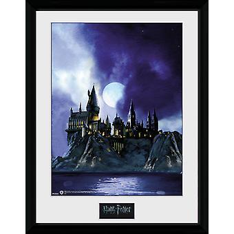 Harry Potter Tylypahka maalattu keräilijä tulosta