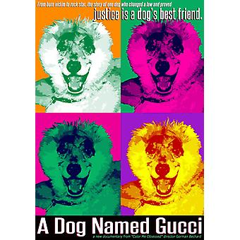 Dog Named Gucci [DVD] USA import
