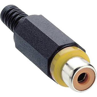 Lumberg XKTO 1-YE RCA connector Socket, straight Number of pins: 2 Yellow 1 pc(s)