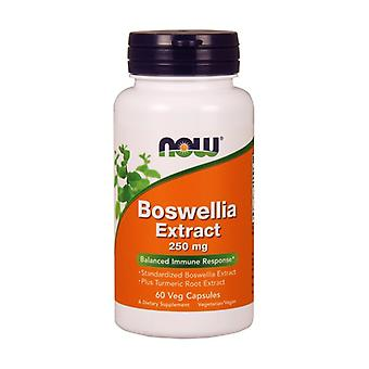 Boswellin Standardized Extracts of Boswellia and Turmeric 120 capsules