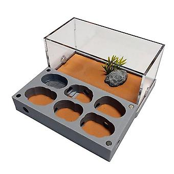 3d Acryl Flat Ant Farm Ecological Ant Nest With Feeding Area - Concrete Ant