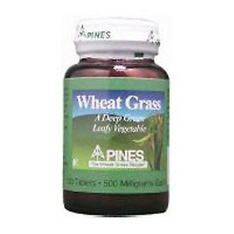 Pines Wheat Grass Wheat Grass, 500 MG, 250 Tabs