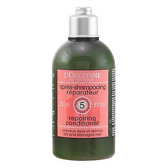 Revitalising Conditioner Aromachology L occitane (250 ml)