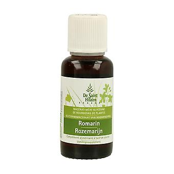 Organic Rosemary Macerate 30 ml