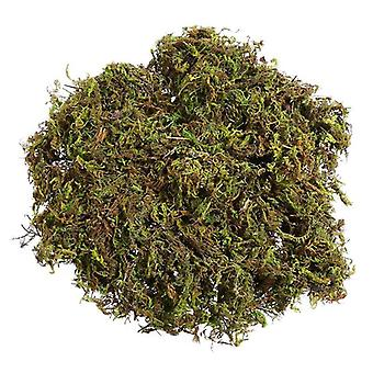 3 Packs artificial moss lichen simulation fake green plants for home garden patio decoration artificial plant moss (about 60g)