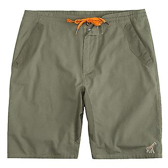 LRG Happy Campers waar rechte Walkshort Dusty Olive