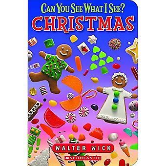 Kerst aan boord boek (kun je zien wat ik zie?)