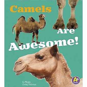 Camels Are Awesome! by Allan Morey - 9781491439234 Book
