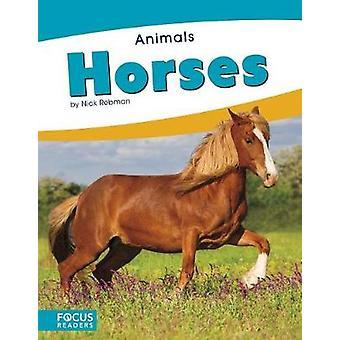 Animals - Horses by Animals - Horses - 9781635179514 Book