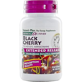 Herbal Actives - Black Cherry 750 mg (30 Tablets) - Nature's Plus