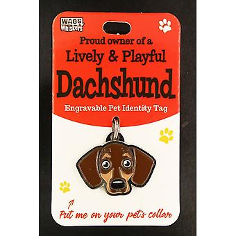 Wags & Whiskers Pet Identity Tag - Dachshund