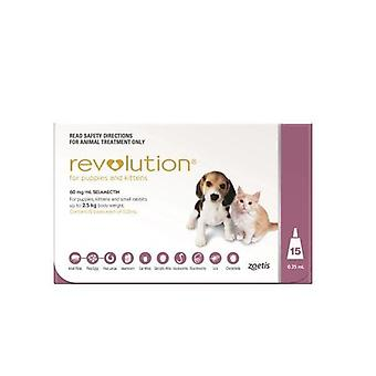 Revolution Pink Pup/Kit 15 Pack