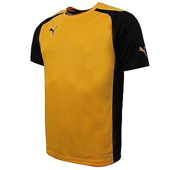 Puma Miesten Speed Jersey Training Kuntosali Urheilu T-paita Keltainen 701906 07