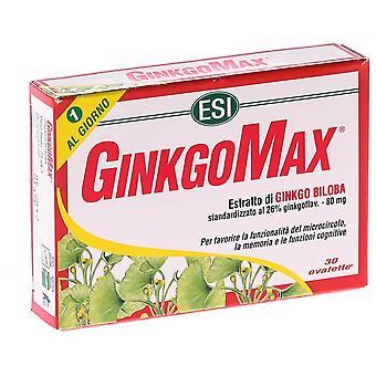 Trepatdiet Ginkgomax 30 cap