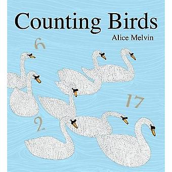 Counting Birds 1