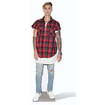Justin Bieber Purpose Cardboard Cutout / Standee / Stand Up