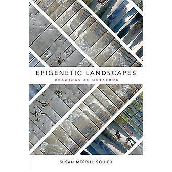 Epigeneettiset maisemia - piirustukset vertauskuvana Susan Merrill Squier-