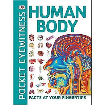Pocket ögonvittne människokroppen: Fakta till hands (Pocket ögonvittne)