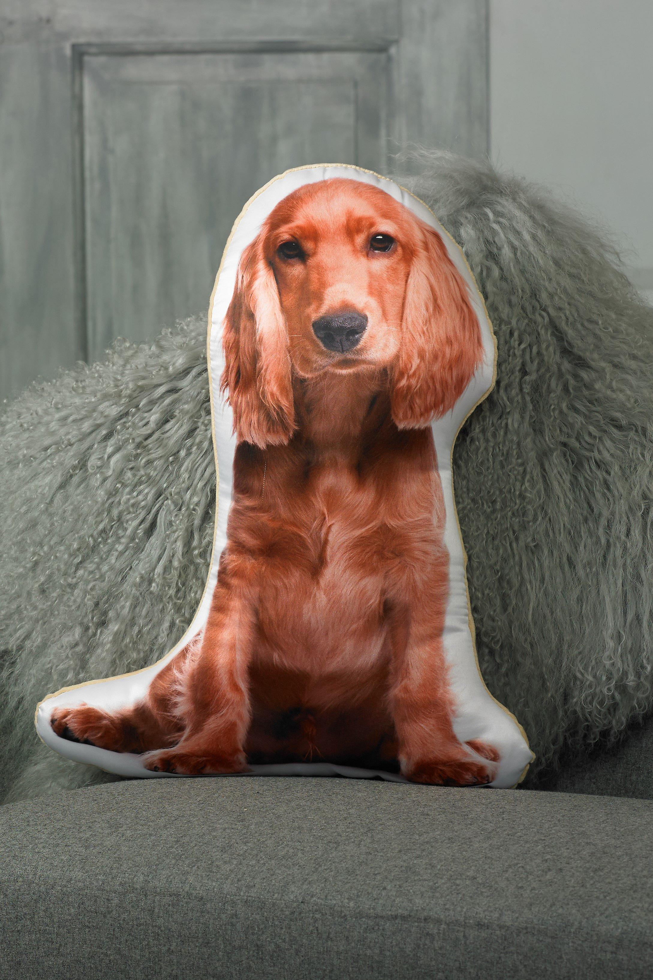 Adorable golden cocker spaniel shaped cushion