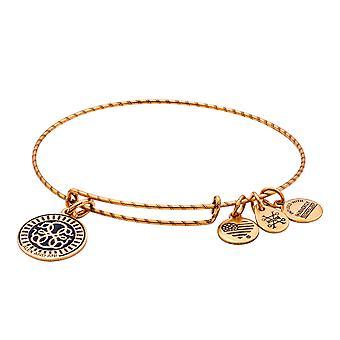 Alex and Ani PATH OF LIFE Double Sided Embossed Charm Bangle Bracelet - Rafaelian Gold