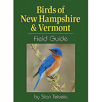 Vogels van Newhampshire & Vermont Field Guide (Bird identificatie gidsen)
