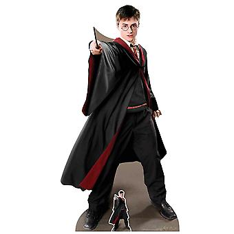 Harry Potter Quidditch Captain Official Lifesize Cardboard Cutout / Standee (2019)