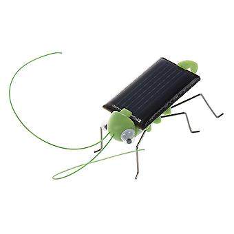 Solar Powered Grasshopper. Bare placer i solen og se it's Legs Jiggle And