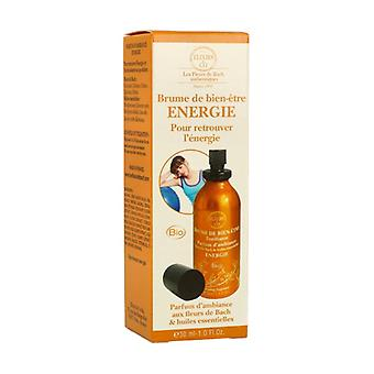 Energy well-being mist 30 ml