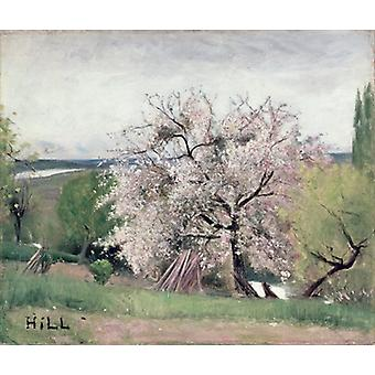 Fruit Tree in Blossom, Bois-le-Roi by Carl.. - Art Print