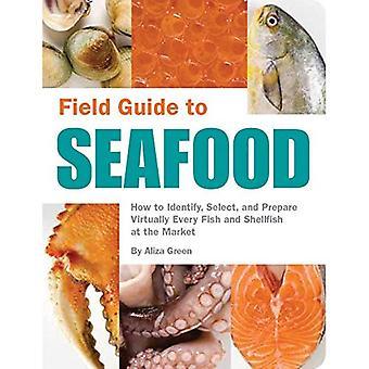 Field Guide till skaldjur