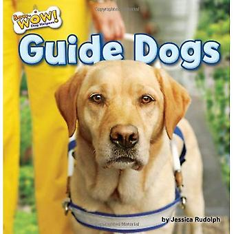 Guide Dogs (Bow-Wow! Dog Helpers)
