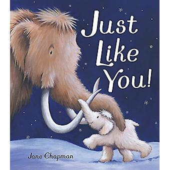 Just Like You! by Jane Chapman - 9781848699342 Book