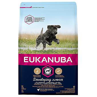 Eukanuba Developing Junior Large Breed Chicken Dog Food