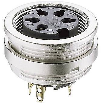 Lumberg KFV 81 DIN connector Socket, verticale verticale aantal pins: 8 zilver 1 PC('s)