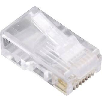 BEL موصلات ستيوارت 940SP3088R 1400-1000-10 RJ45 التوصيل، جلاسي مستقيم