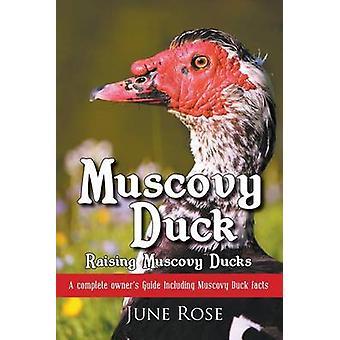 Barbarie-Ente Heben Muscovy Ducks von Rose & Juni