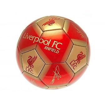 Liverpool FC signatur ball