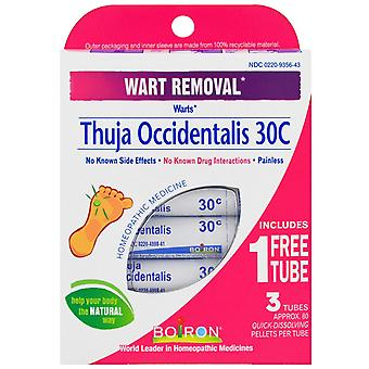 Boiron, Thuja Occidentalis 30C, 3 Tubes, Approx 80 Pellets Each