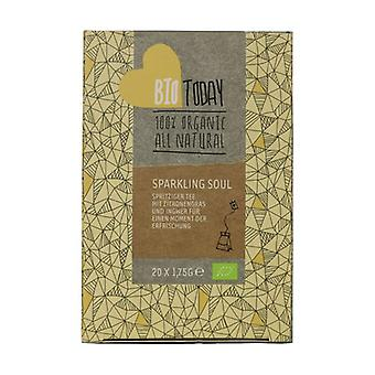 Bright soul tea 20 infusion bags of 1.75g