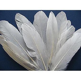 ÚLTIMOS POCOS - 12 plumas blancas de pluma de ganso de 16 cm para artesanías