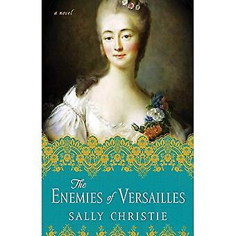 Les ennemis de Versailles: un roman (les maîtresses de la trilogie de Versailles)
