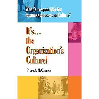 Wat is verantwoordelijk voor zakelijk succes of falen? -Het is de Organiz