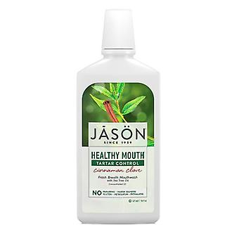 Jason Natural Products Mouthwash, Healthy Mouth 16Oz