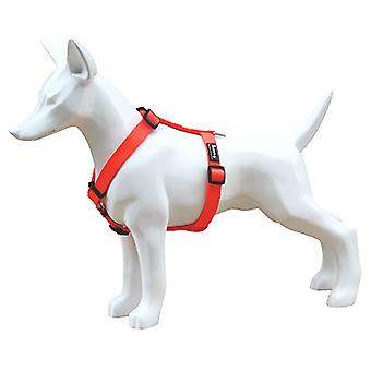 Freedog Harness Nylon Neon Orange Fluor (Dogs , Collars, Leads and Harnesses , Harnesses)