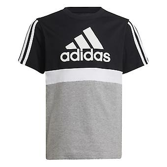 Adidas Essentials Colorblock GS8886 training all year boy t-shirt