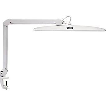 Maul arbejde 8205202 LED skrivebord lys (+ klip mount) 21 W dagslys hvid hvid