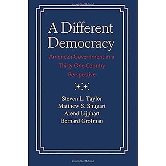En annan demokrati: Amerikanska regeringen ur ett 31-land