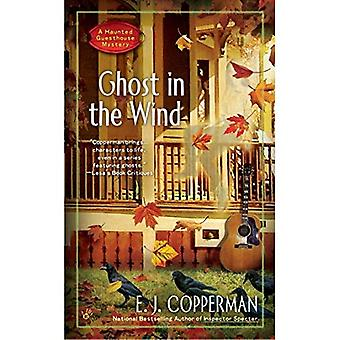 Ghost in the Wind : A Haunted Guesthouse Mystery