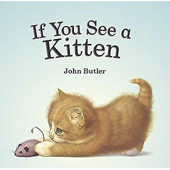Si vous voyez un chaton